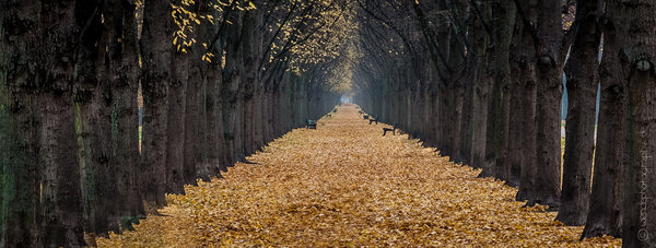 Herbst in Hannover