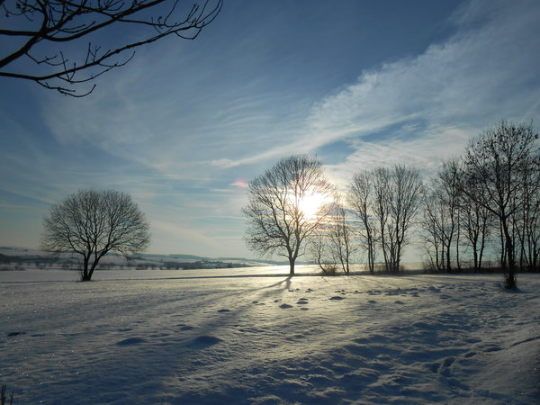 winter, landschaft