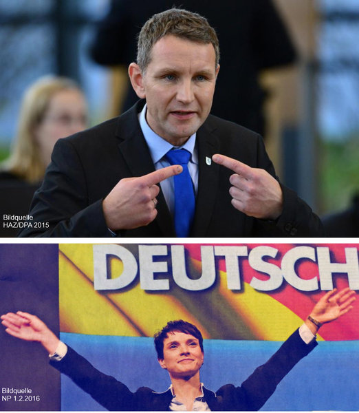 afd, afd-höcke, afd-petry