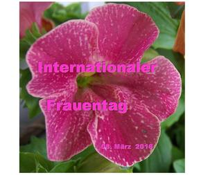 Internationaler Frauentag – 08. März 2016