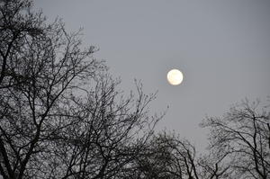 Vollmond in Hannover