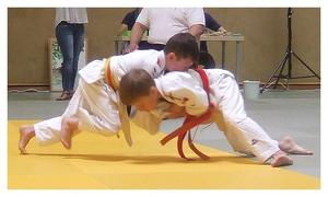 Hemminger Judoka beim 7. VoBa-Cup in Holle