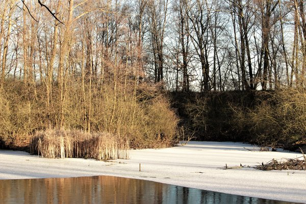 baggersee, frostiges