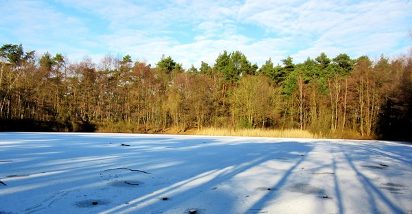 wintersonne, horster-see