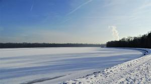 Winter-Sonnentag am Faiminger-Stausee. (Donau)