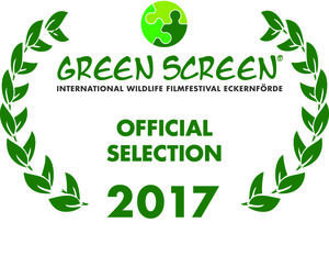 Nordvorpommersche Waldlandschaft – Green Screen Festival Programm 2017 (Official Selection)