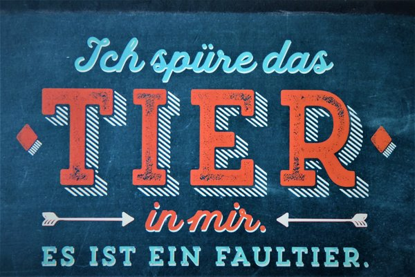 spruch, faultier