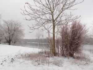 Winteridylle am Masurensee