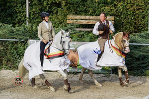 'High Speed' Erfolg - Deutsche Meisterschaften 'Working Equitation 2018' in Thierhaupten