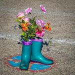 These Boots are made for Blümchen :-)