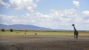 Landschaftsfotos vom Lake Manyara Nationalpark