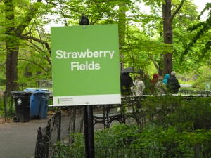 Strawberry fields for ever!
