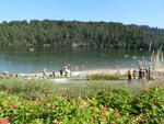 Strandbad Twistesee.