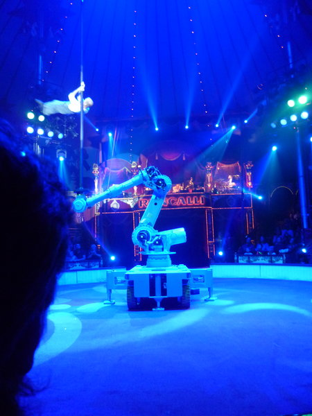 tolles-erlebnis, circus-besuch