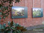 Ausstellung 'International Garden Photographer of the Year' im Subtropenhof des Berggartens Herrenhausen (Foto: Katja Woidtke)