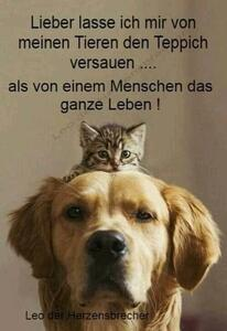 So isses !