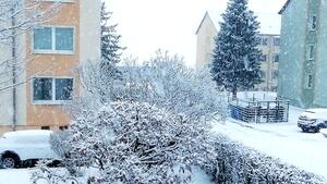 Winter Wonderland Nebra !